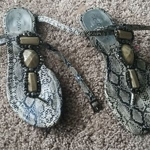 Coconuts Snake Sandals